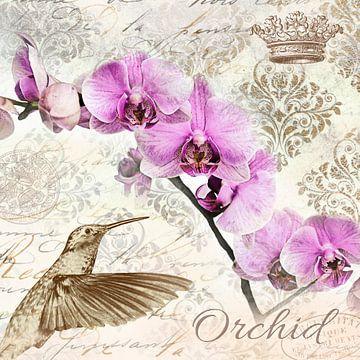 Kolibri und Orchidee von christine b-b müller