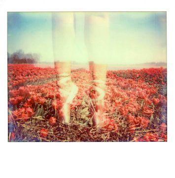 Ballet in tulpenveld van Lilian Wildeboer