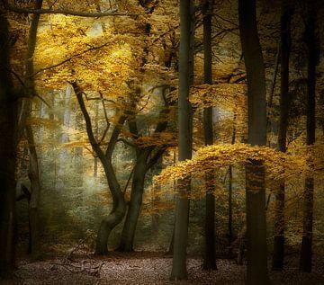 Life Is What You Make It von Kees van Dongen