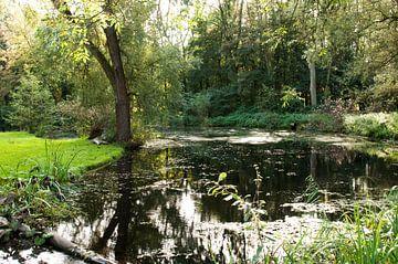 Kralingse Bos van Anuska Klaverdijk