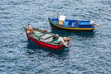Fishing boats in Camara de Lobos on the island Madeira, Portugal van Rico Ködder