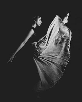 Balletdanser in zwartwit 04 van FotoDennis.com
