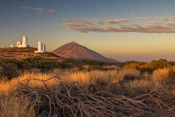 El Teide von Robin Oelschlegel