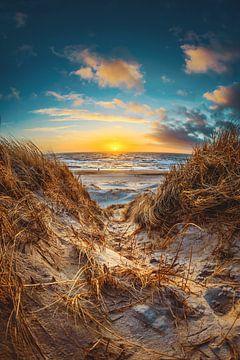 Coucher de soleil dans les dunes du Danemark sur Florian Kunde