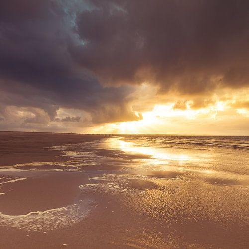 Maasvlakte 11 von Desh amer
