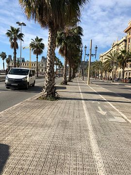 Barcelona (Spanje) by sun!  van