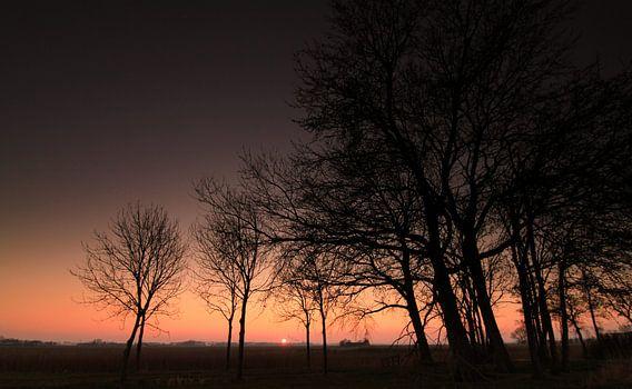 In de polder van Ron de Vries