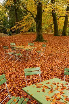 Herbstwald von Miranda Bos