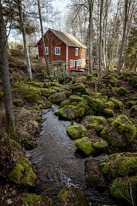 Swedish houses. van