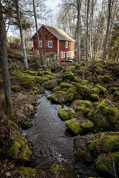 Swedish houses. von Remco van Adrichem