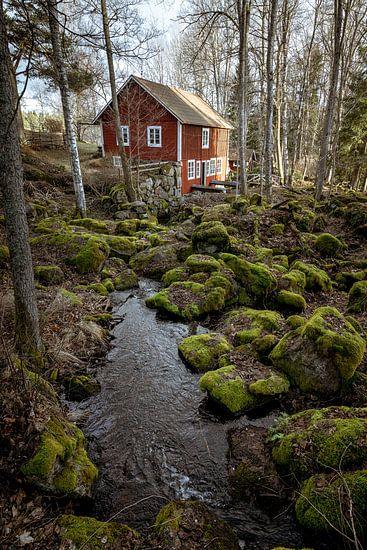 Swedish houses.