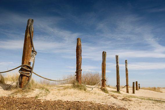 Duinen op Texel van Sigrid Westerbaan