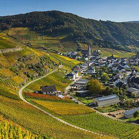 Vineyards in the autumn, Mayschoss, Ahrtal van Walter G. Allgöwer
