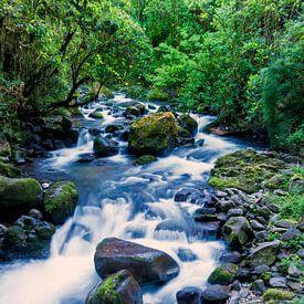 Stromende rivier in het regenwoud van Costa Rica van Michael Kuijl