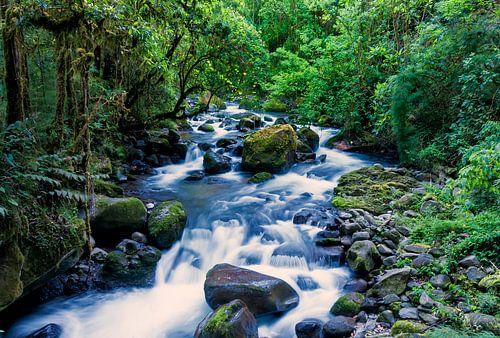 Stromende rivier in het regenwoud van Costa Rica