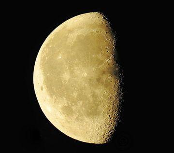 De maan van Bram van den Berg