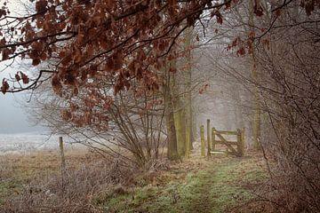 Tor in der Natur von Ronenvief