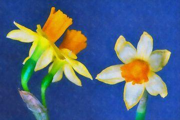 Narcissen (aquarel) van Leo Huijzer
