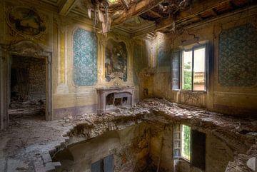 Proper Decay sur Roman Robroek