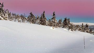 Winterlandschaft mit Venusband in Norwegen von Adelheid Smitt