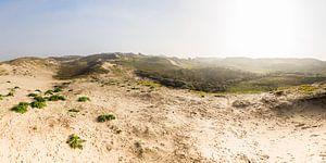 panorama van de duinen