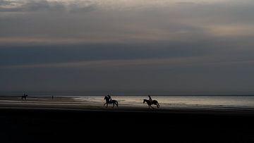 Paarden op het strand.