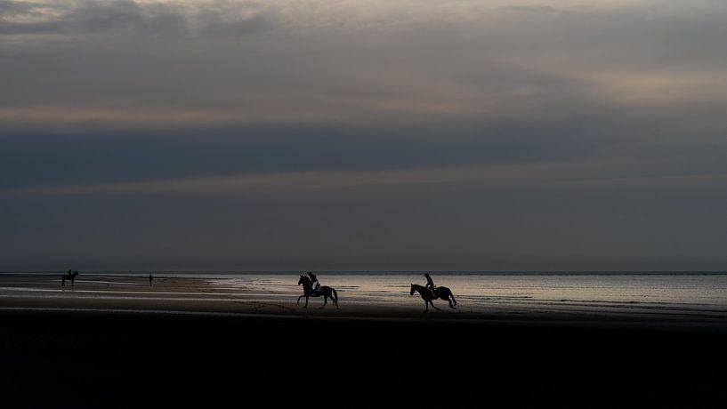 Paarden op het strand. van Henri Boer Fotografie
