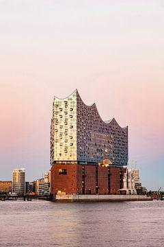 Elbphilharmonie in der HafenCity in Hamburg von Werner Dieterich