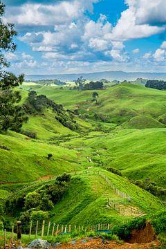 Landschaft Neuseeland von Ivo de Rooij
