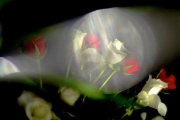 Blumenstrauß aus Rosen von Marianna Pobedimova