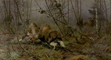 Zwei kämpfende Elchböcke, im Hintergrund die Kühe, Richard Friese