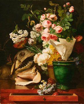 Nature morte aux fleurs, coquillages, tête de requin et pétrifications, Antoine Berjon sur