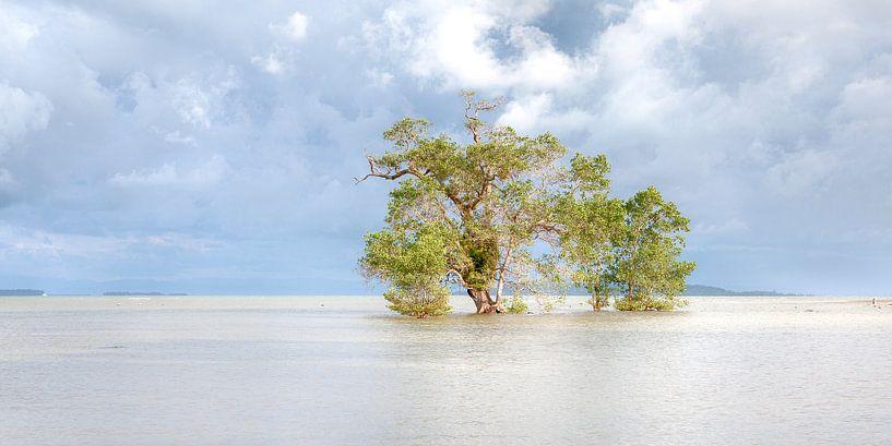 Watertree van Ruud Laurens