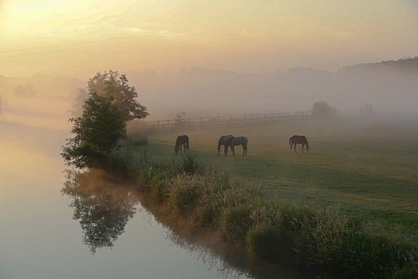 Ruhrweide in de ochtend van Bernhard Kaiser