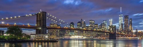 New York Skyline - Brooklyn Bridge 2016 (10)