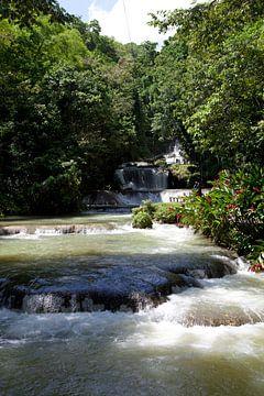 YS Falls - Jamaica van t.ART