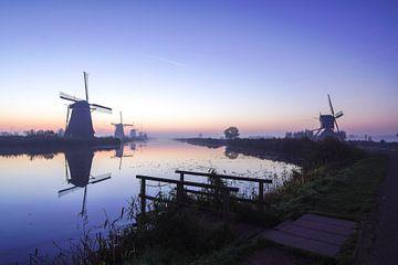 De molens van Kinderdijk bij nacht van