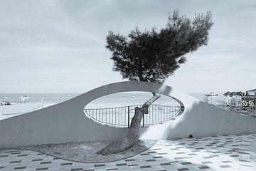 Gevormd door de wind, Marina di Patti, Sicilië