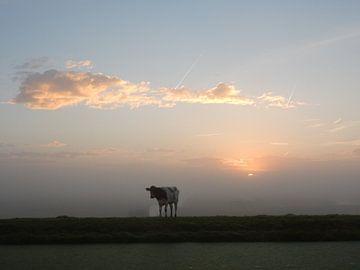 zonsopkomst van bert jorritsma