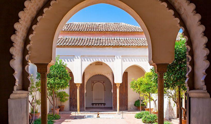 Malaga Alcazaba - Andalusie, Spanje van Gerard van de Werken
