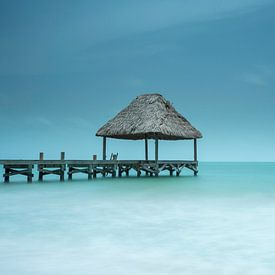 perfect place van Aline van Weert