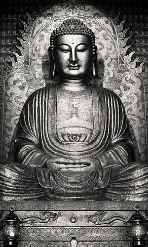 Buddha - Sakyamuni van