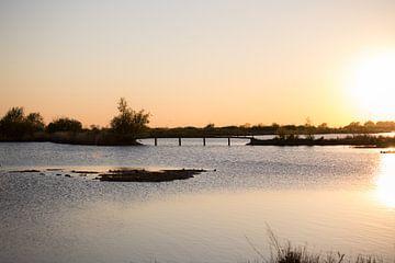 Sonnenuntergangs-Korendijkse-Schwalbe von Valerie de Bliek