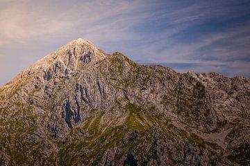 Alpentop von Freddy Hoevers