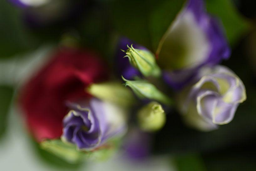 Bloemen van Grietje van der Reijnst-Brak