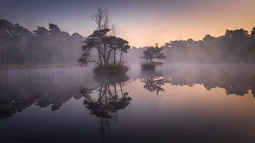 Ein nebliger Morgen. von Sven Broeckx