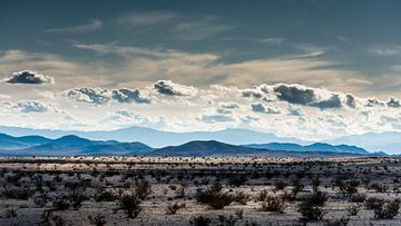 Mojave-Wüste -1 von Keesnan Dogger Fotografie