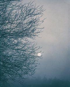 Moon Magyk