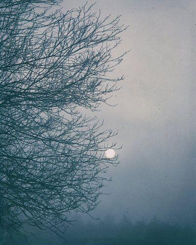 Moon Magyk von