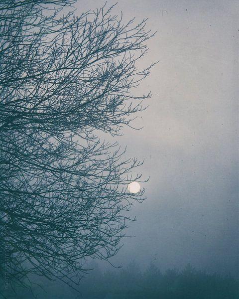 Moon Magyk von mimulux patricia no